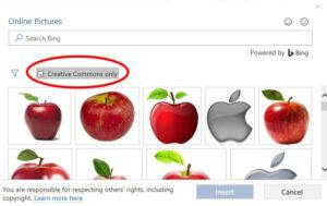 picture options with creative commons ticked