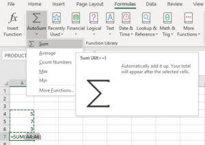 Functions using Autosum