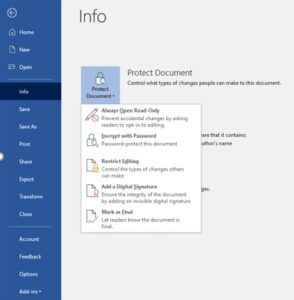 Word document protection menu